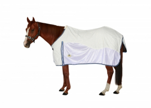 Ascot Summer Airflow rug