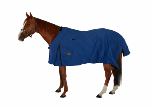 ASCOT CANVAS RUG UNLINED